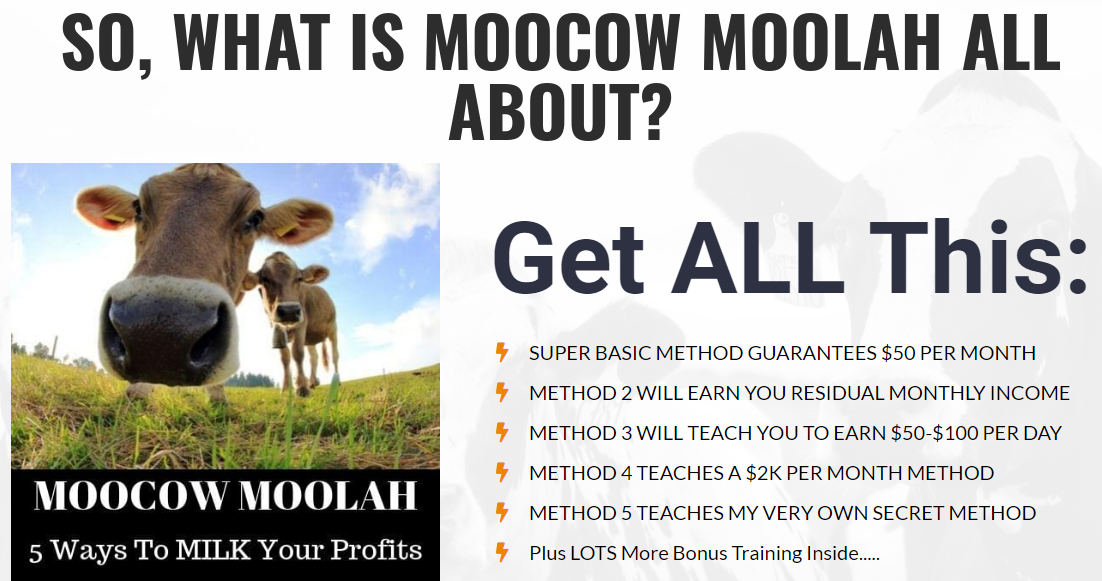Moocow Moolah Download