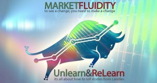 Market Fluidity Download