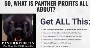 Panther Profits Download
