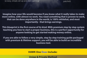 HAWK One – SELLING MADNESS – 2019 Unique Method to $3K Weekly Download