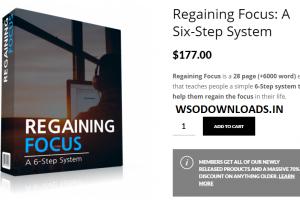 Regaining Focus - A Six-Step System Download