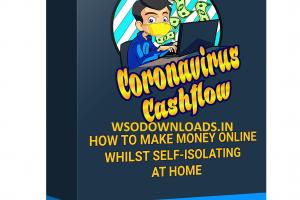 Coronavirus Cashflow Download