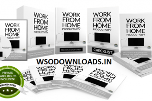 Work From Home Productivity PLR Download