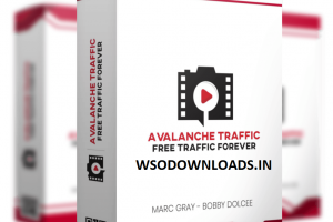 Avalanche Traffic Download