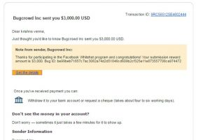 Make Money Finding Bugs on Other Websites Download