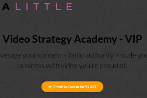 Trena Little – Video Strategy Academy (VIP) Download