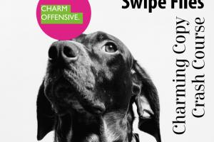 Charm Offensive – Charming Copy Crash Course Download