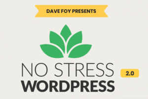 Dave Foy – No Stress WordPress 2.0 Download