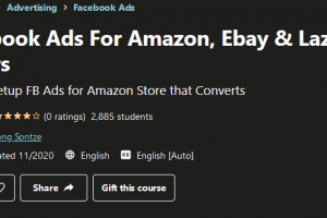 Facebook Ads For Amazon, Ebay & Lazada Sellers Free Download