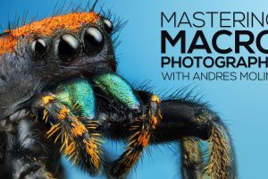 Andres Moline - Fstoppers – Mastering Macro Photography Download