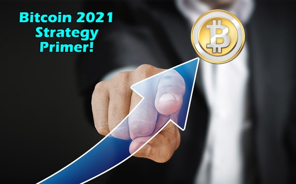 Bitcoin 2021 Strategy Primer Free Download