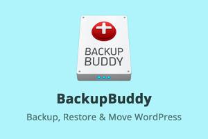 iThemes BackupBuddy WordPress Plugin Free Download
