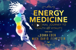 MindValley - Donna Eden - Energy Medicine Free Download