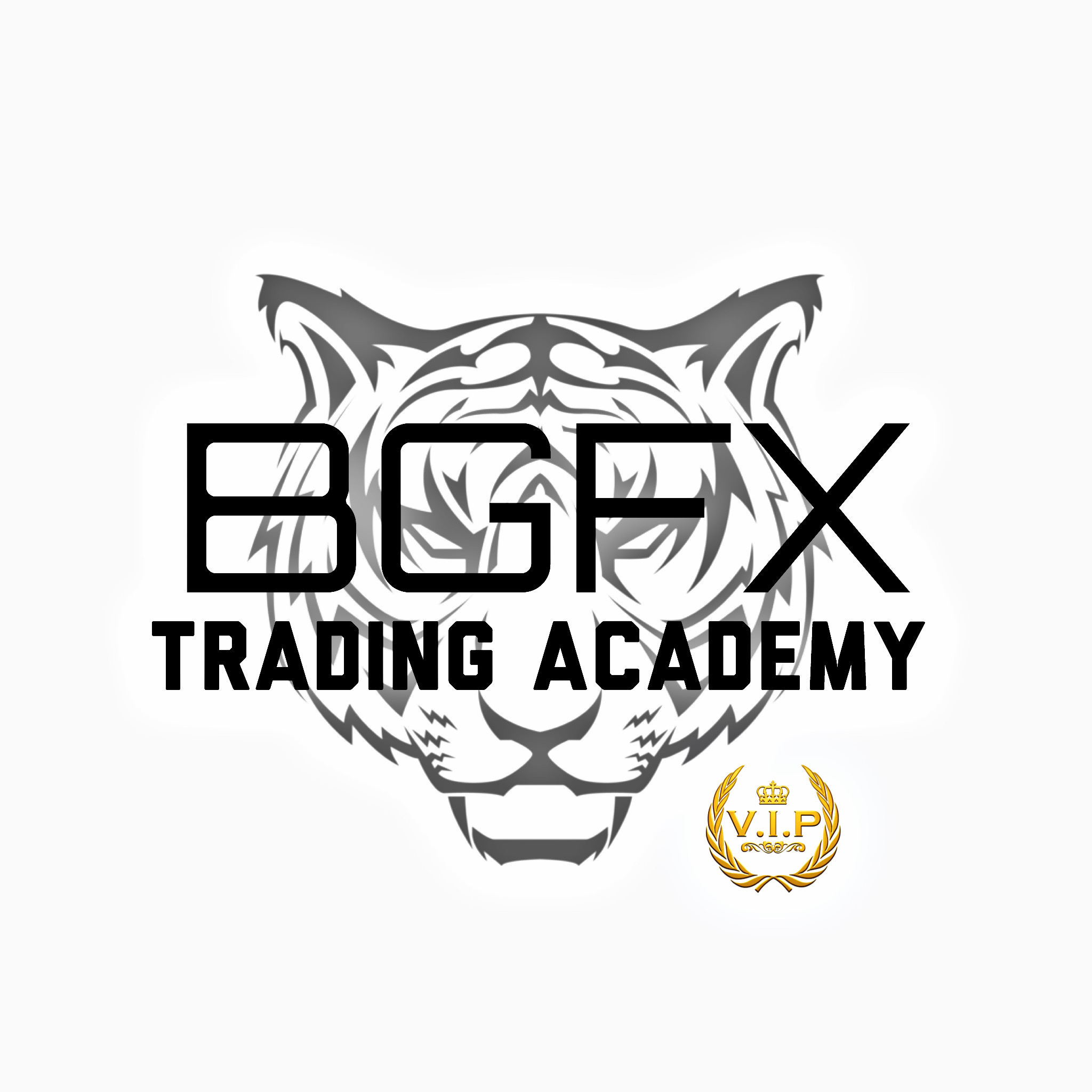 BGFX Trading Academy Download