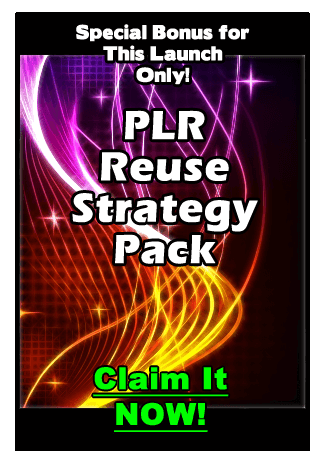 PLR Reuse Power Strategy Pack Free Download