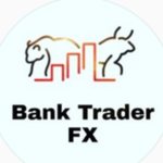 Bank TraderFX SA Course Free Download